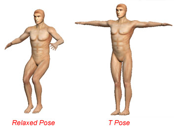 A pose for rigging used by the software iClone by reallusion